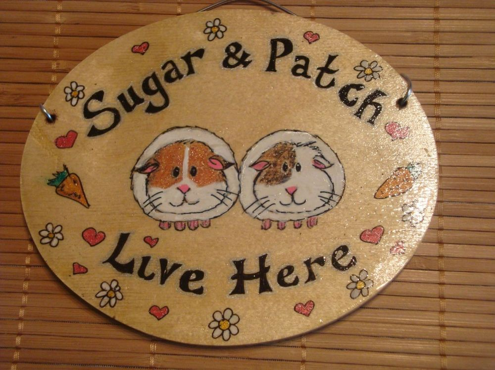 Guinea Pig Bunny Hutch Run Cage Or Bedroom Sign Any Colour